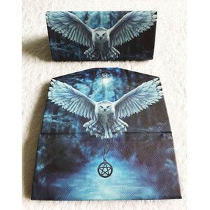 Awaken Your Magic Glasses Case by Anne Stokes