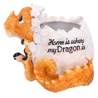 Home Is Where My Dragon Is Pot Garden/House Figurine
