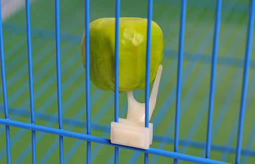 Hot Sale pet parrot Fruit fork birds set on the cage convenient feeder supplies device 2 PCs /LOT a15 - KiddyLanes