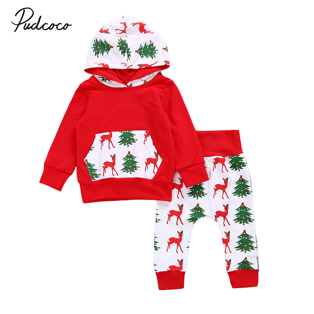 Autumn Newborn Baby Boys Girls Outfits Sweatshirt Hoodie + Pants 2Pcs Warm Outfits Set Clothes - KiddyLanes