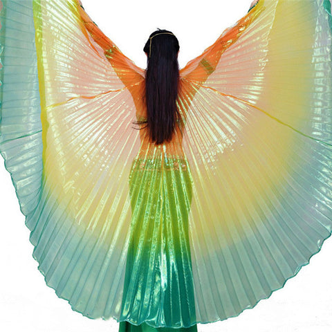 Shiny Wings for Charity