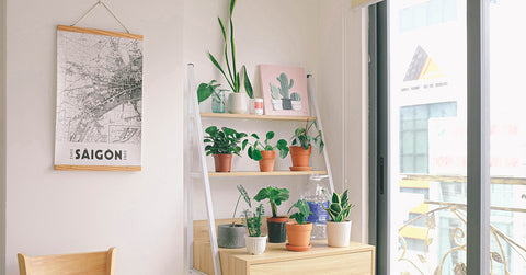 3 HOME HACKS TO MAKE YOUR SPACE HEALTHY