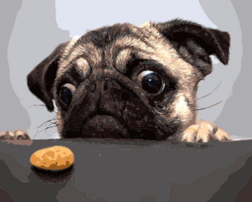 Hungry Pug - PicArtSo™ Paint-by-Number Kit