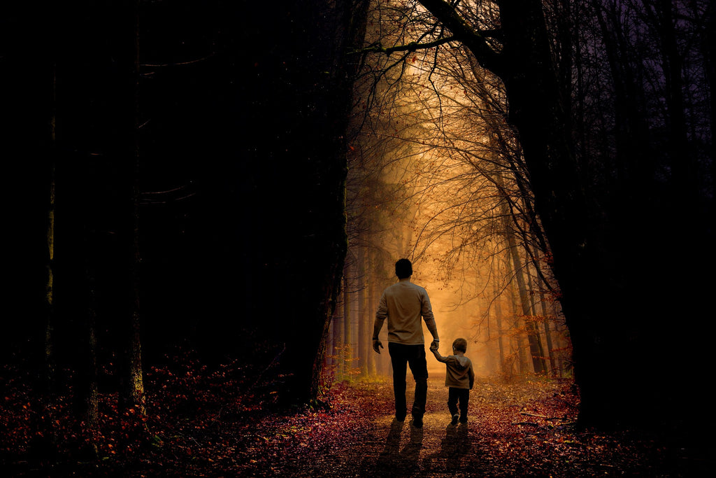 Father and son in forest walking