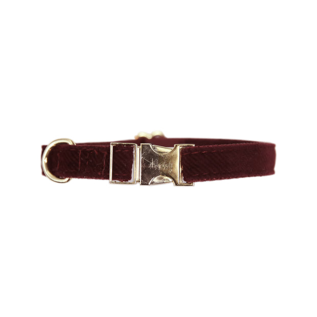 Dog Collar Corduroy