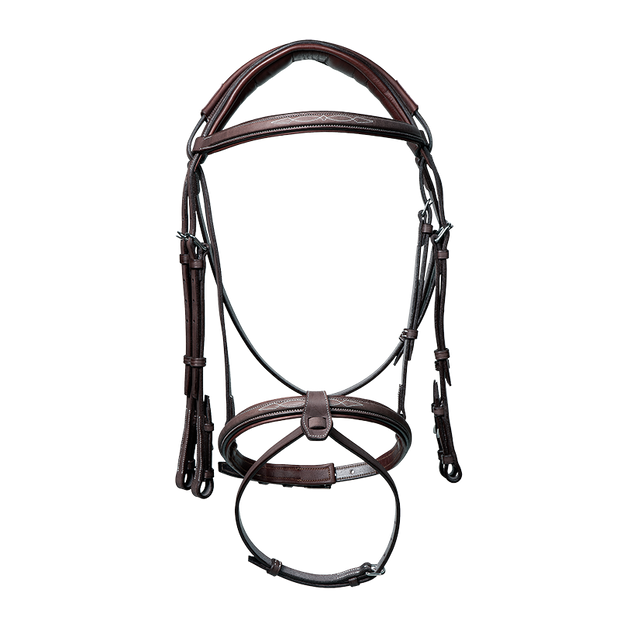 Anatomic bridle with fancy stitching