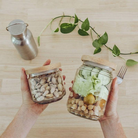 seed-sprout-storage-eco