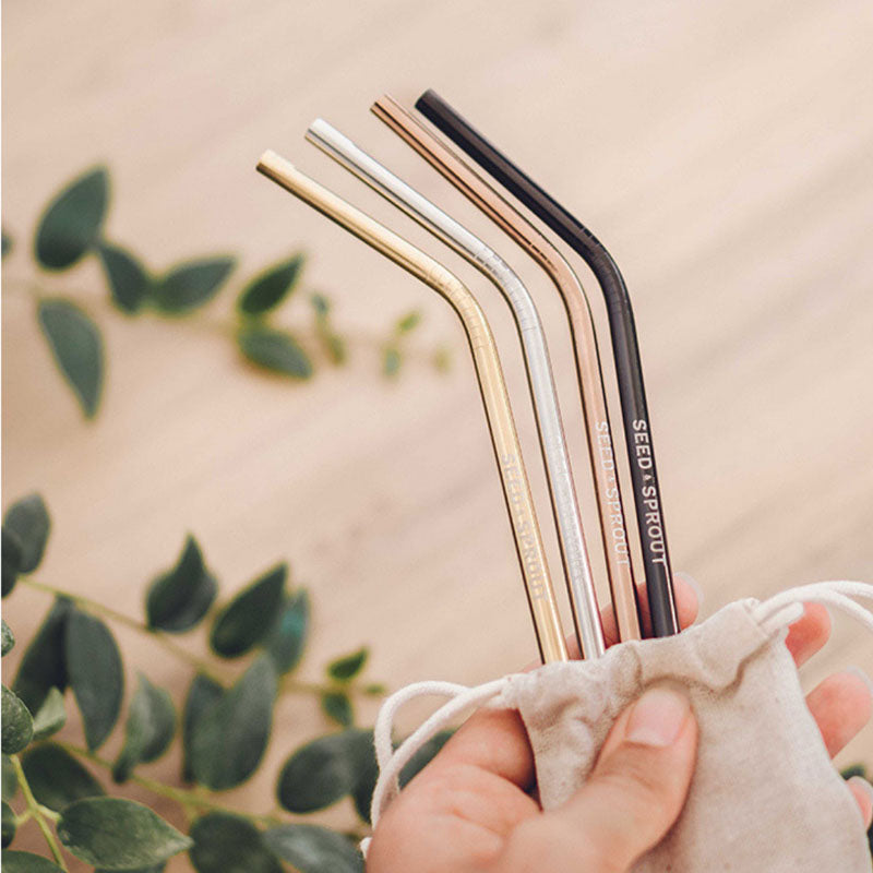 Stainless steel reusable straw set