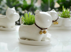 Handmade Ceramic Cat Shaped Flower Pot