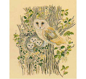 Barn Owls Embroidery Kit by Design Perfection