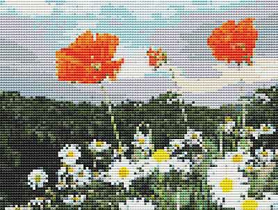 Poppies and Daisies Cross Stitch Chart by September Cottage Crafts