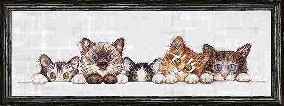 Curious Kittens Cross Stitch Kit by Design Works