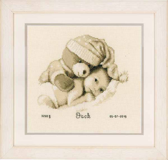 Baby and Teddy Birth Sampler Cross Stitch Kit By Vervaco