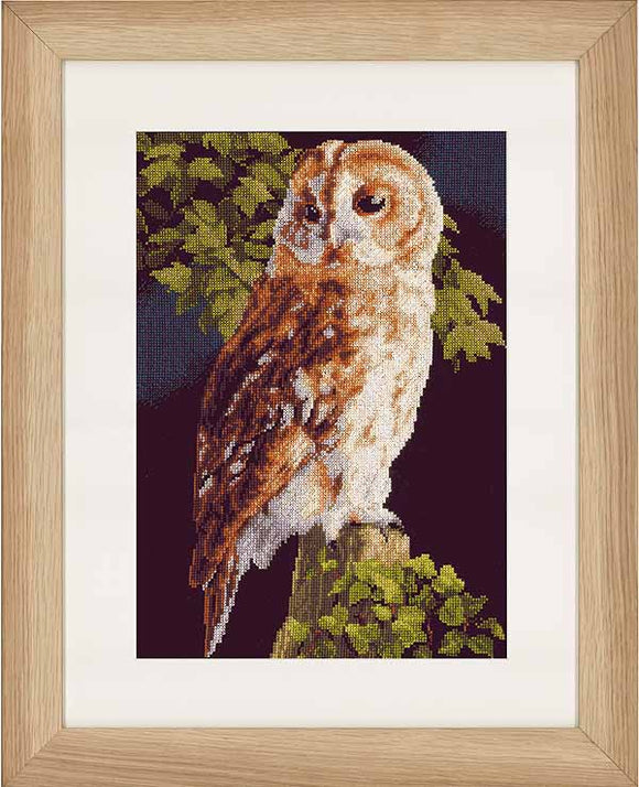Owl Cross Stitch Kit By Lanarte