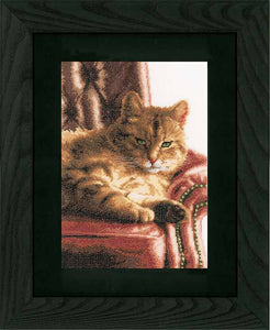 Relaxed Tabby Cross Stitch Kit By Lanarte