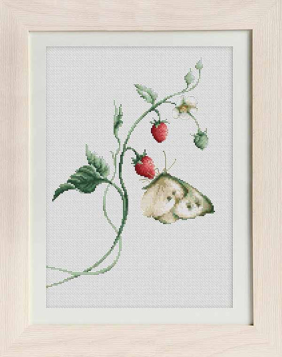 Aroma of Summer Cross Stitch Kit by Luca S
