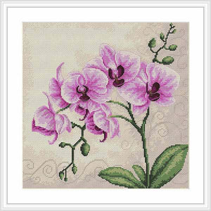 Orchid Cross Stitch Kit by Luca S