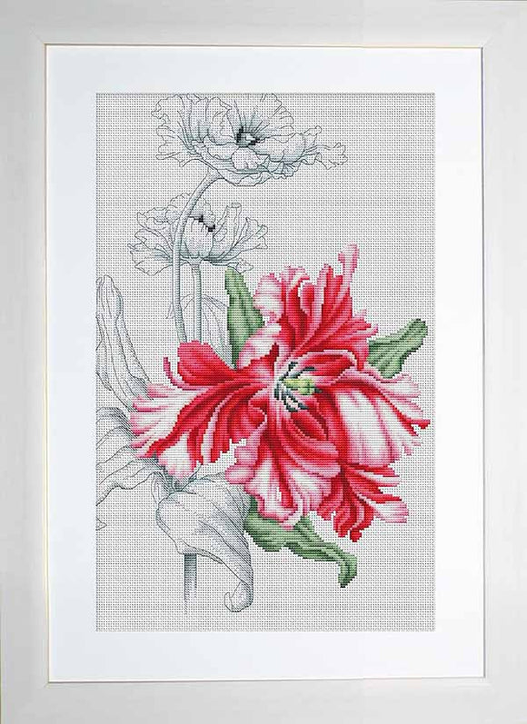 Red Tulips Cross Stitch Kit by Luca S