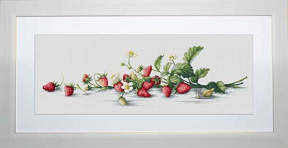 Etude with Strawberries Cross Stitch Kit by Luca S