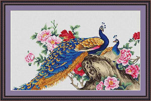 Peacock Cross Stitch Kit by Luca S