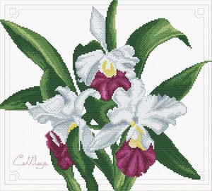 Bouquet of Orchids Printed Cross Stitch Kit by Needleart World