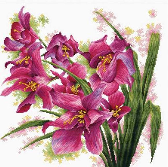 Lovely Orchids Printed Cross Stitch Kit by Needleart World