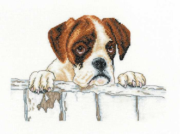 Bailey Cross Stitch Kit by Heritage Crafts