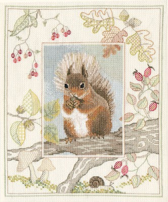 Red Squirrel Cross Stitch Kit by Derwentwater Designs