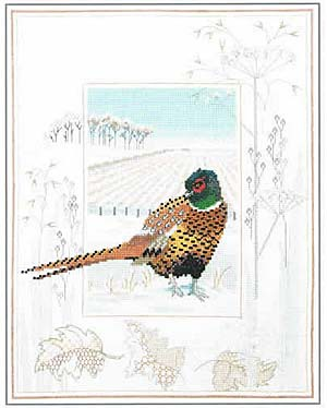 Pheasant Cross Stitch Kit by Derwentwater Designs