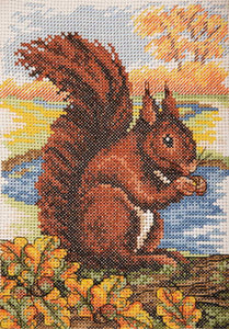 Red Squirrel Cross Stitch Kit By Anchor