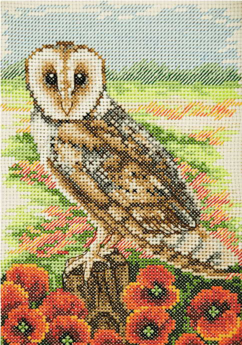 Owl Cross Stitch Kit By Anchor
