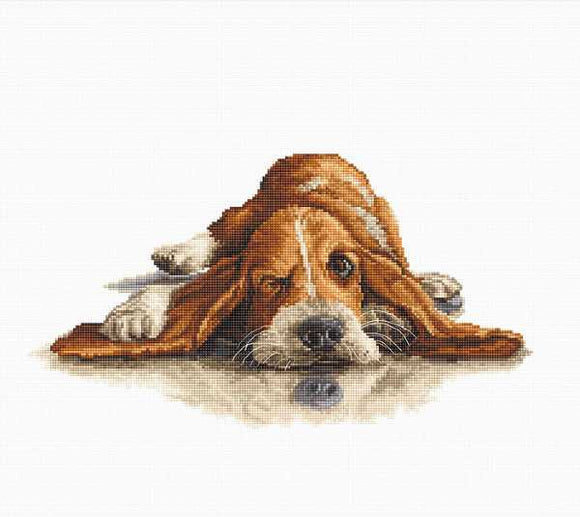 Bassett Hound Cross Stitch Kit by Luca S