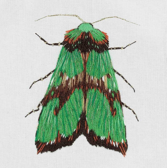 Green Moth Embroidery Kit by PANNA