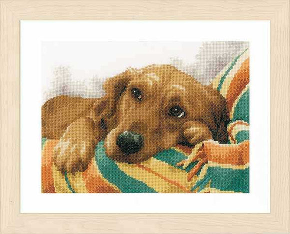 Little Rascal Cross Stitch Kit By Lanarte