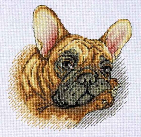 French Bulldog Cross Stitch Kit by Merejka