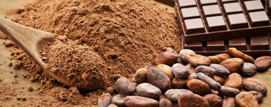 Top Cocoa Producing Countries