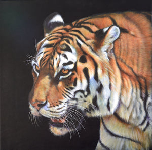Tiger Pemburu