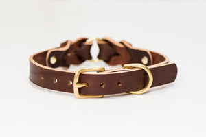 leather_dog_collar