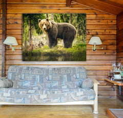 Big Brown Bear In Forest Framed Wall Art