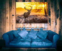 Big Buck Sunset Framed Canvas Wall Art Deer Wall Art