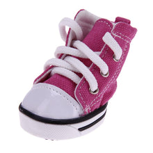 Chaussures pour chien - Sneakers Classic - Rose
