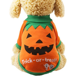 Sweat pour chien - Citrouille Halloween - Orange
