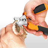 2. Then take the DogRook Nail Clipper and cut off the top of the nail in one motion. Don't cut off too much so as not to hit any blood vessels!