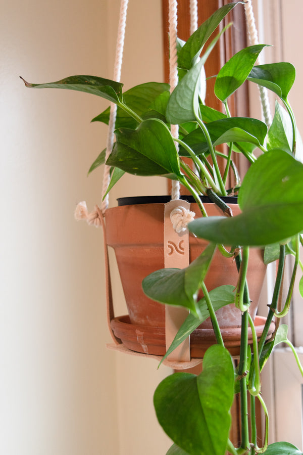 Natural Leather Plant Holder