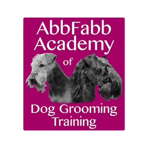 Abbfabb Academy of Dog Grooming Training DVDs
