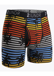 2UNDR Mens Luxury Underwear Swing Shift Boxer Briefs Endless
