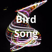 LED Mini Hoops - Bird Song