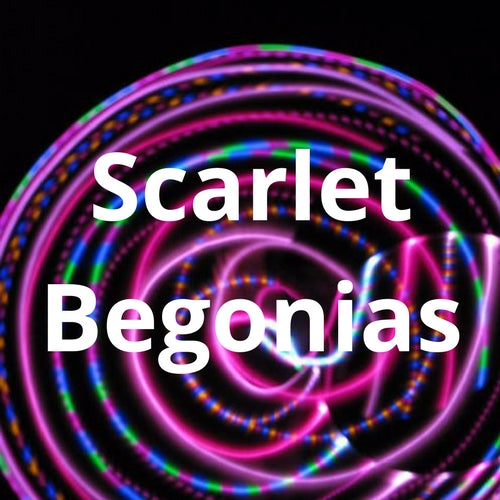 LED Mini Hoops - Scarlet Begonias