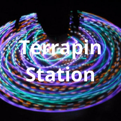 LED Mini Hoops - Terrapin Station