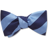 Academy Navy/Blue bow ties
